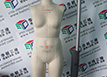 Three-dimensional detection of mannequins、Three-dimensional scanning of human parts